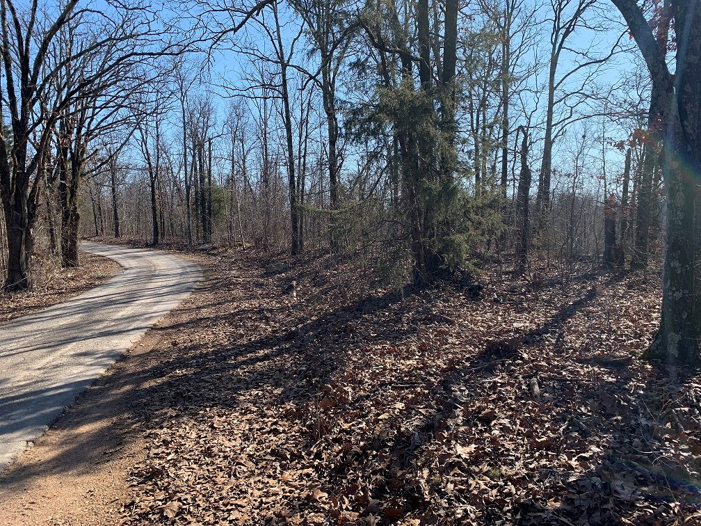 ACREAGE TRACK WITH BUILDING SPOTS IN  CUSHMAN, ARKANSAS