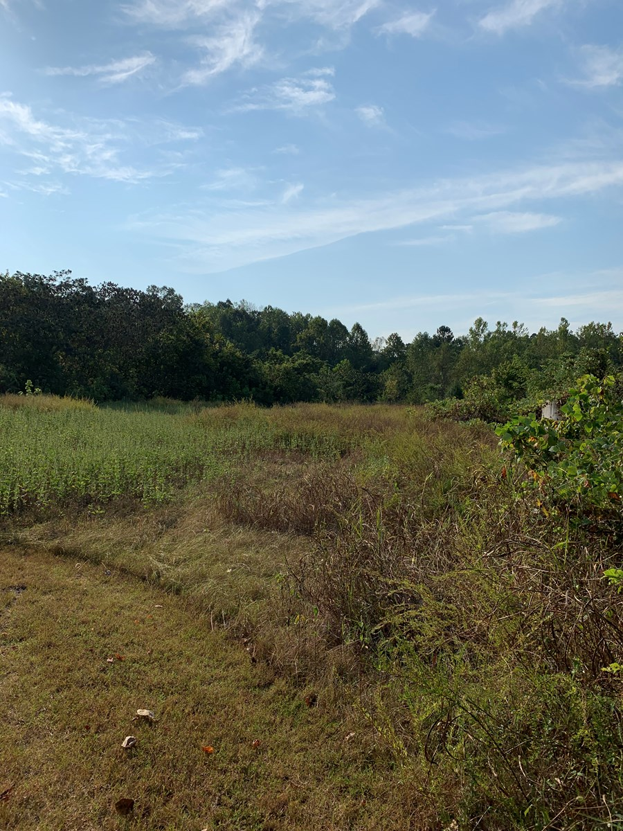 Land for sale in Lawrenceburg, TN