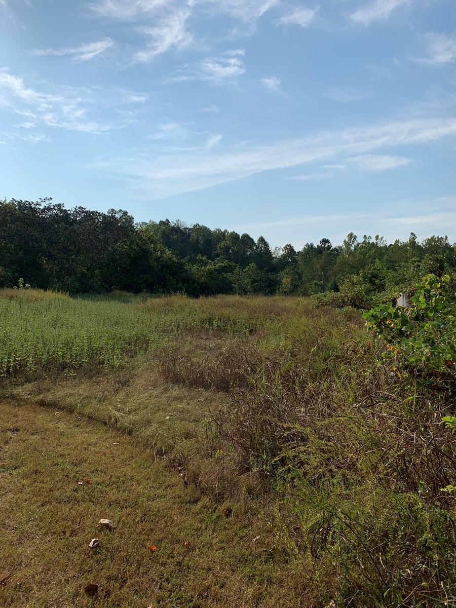 Land for sale in Lawrenceburg, TN