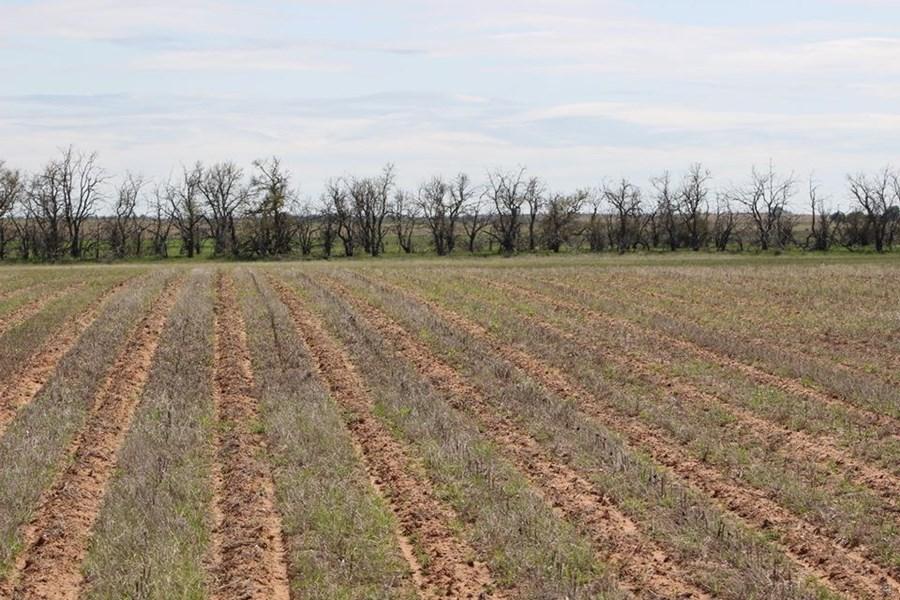 Oklahoma Farm-Ranch For Sale8