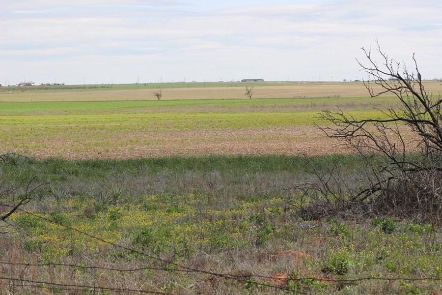 Oklahoma Farm-Ranch For Sale18