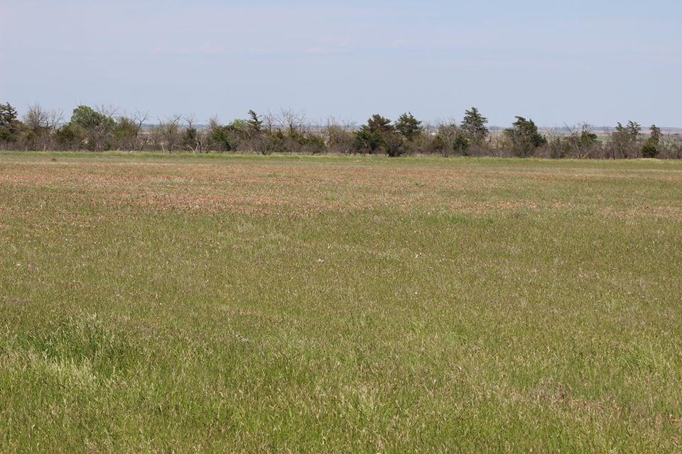 Oklahoma Farm-Ranch For Sale10