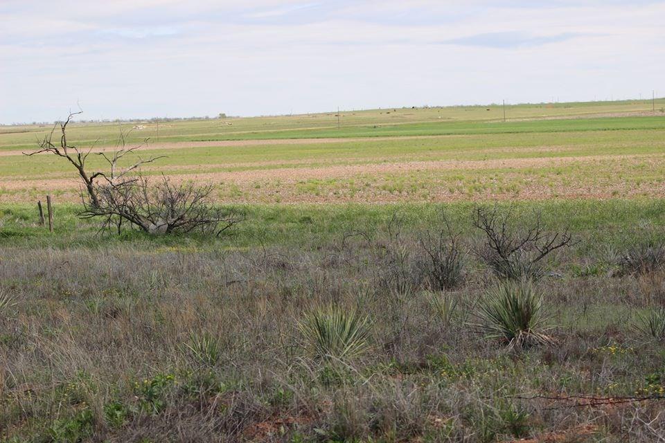 Oklahoma Farm-Ranch For Sale19