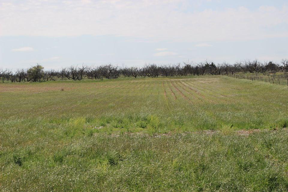 Oklahoma Farm-Ranch For Sale4