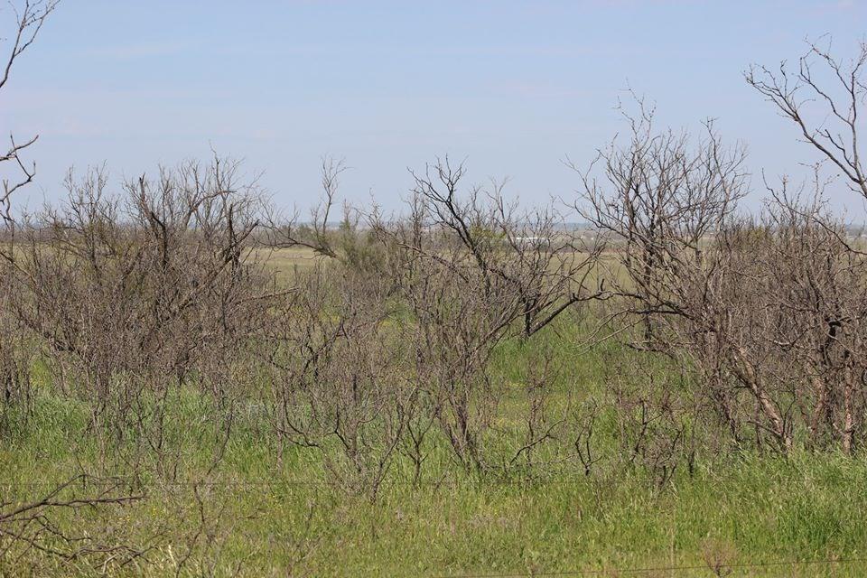 Oklahoma Farm-Ranch For Sale15