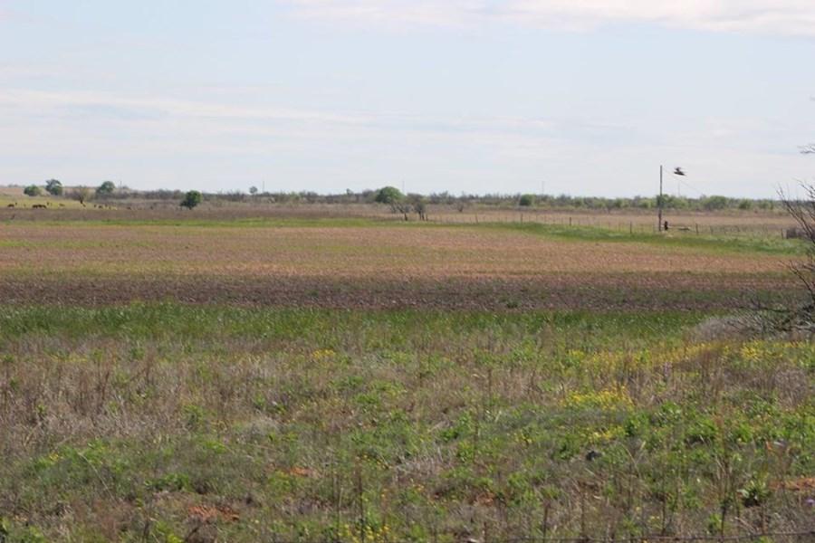 Oklahoma Farm-Ranch For Sale17