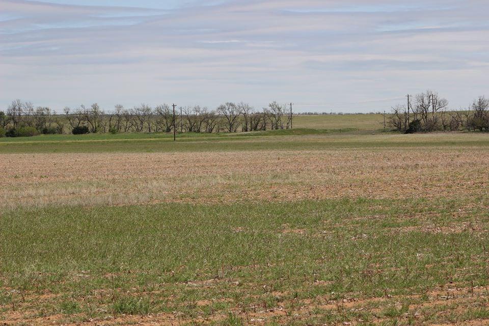 Oklahoma Farm-Ranch For Sale9