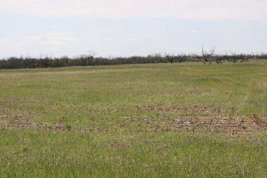 Oklahoma Farm-Ranch For Sale7