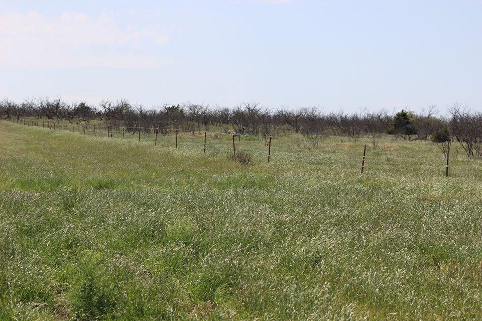 Oklahoma Farm-Ranch For Sale3
