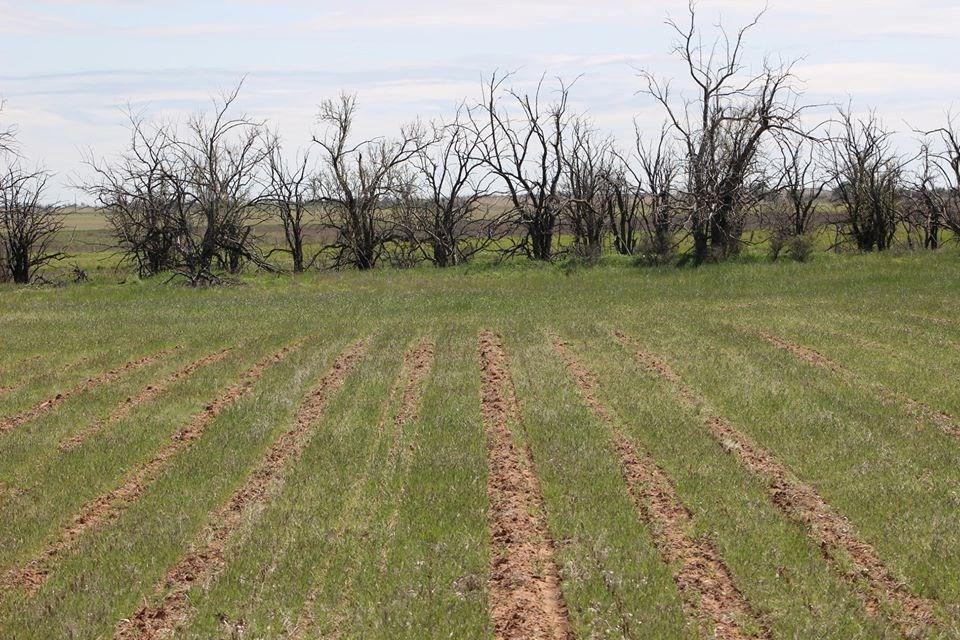 Oklahoma Farm-Ranch For Sale11