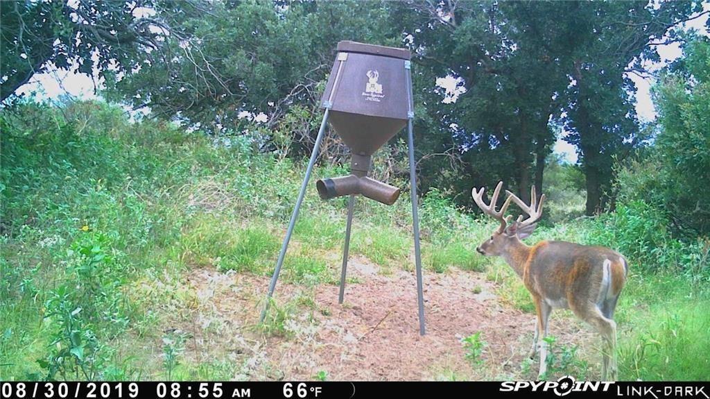 Buck Fever in Oklahoma