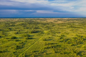 HUNTING LAND FOR SALE NEAR SWEETWATER, OK!