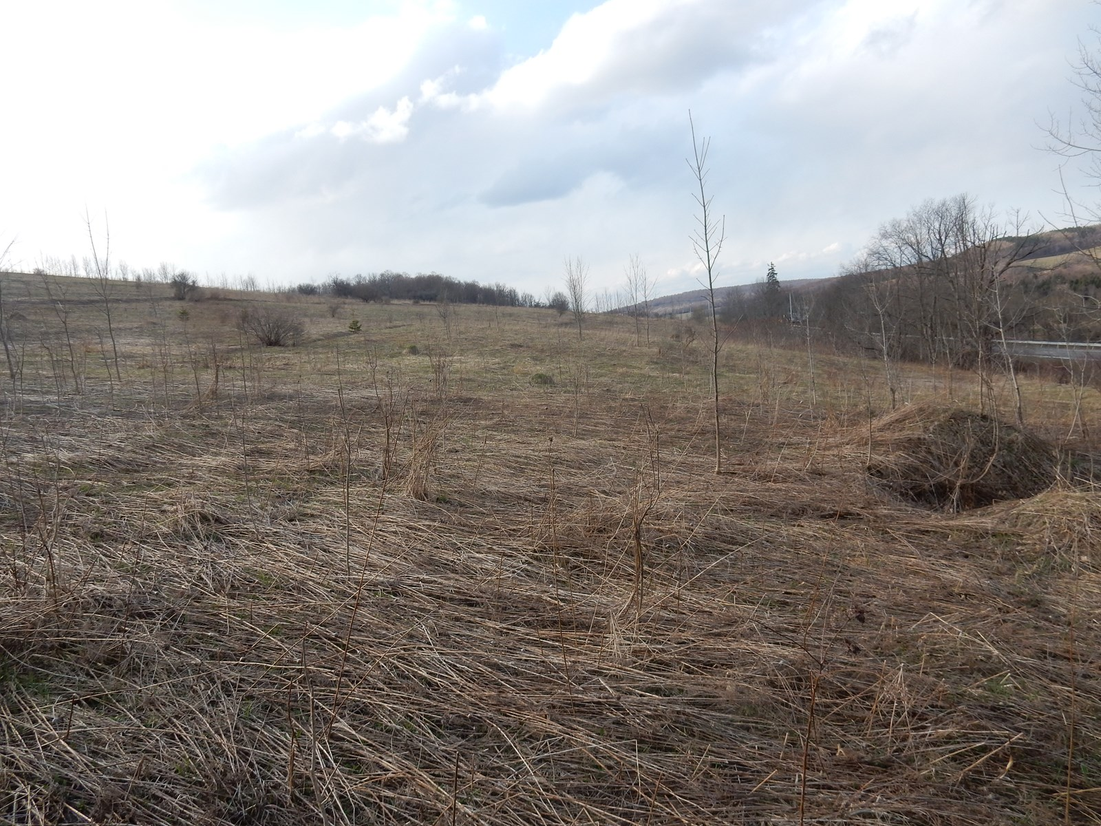 Hunting Property or Building Lot For Sale in Cortland County