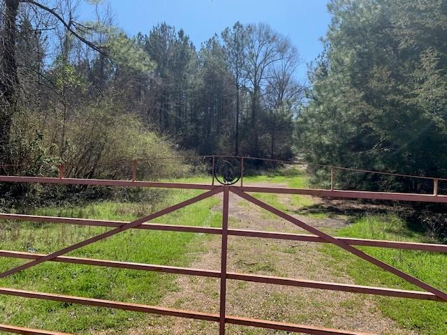 Hunting Land For Sale Jefferson County Fayette Mississippi