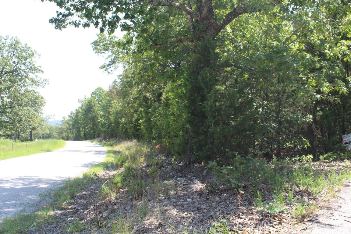 Vacant Land Near Bull Shoals Lake in Protem, Missouri