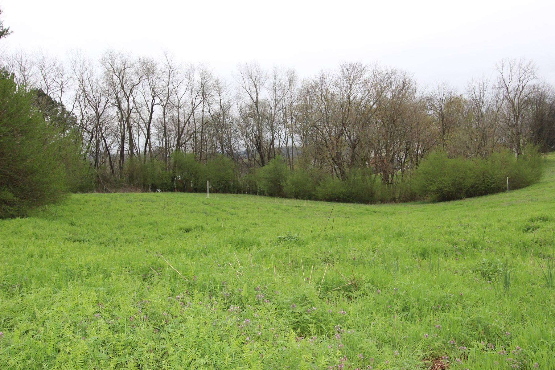 Mixed Zone Lot for Sale in Culleoka, Tennessee