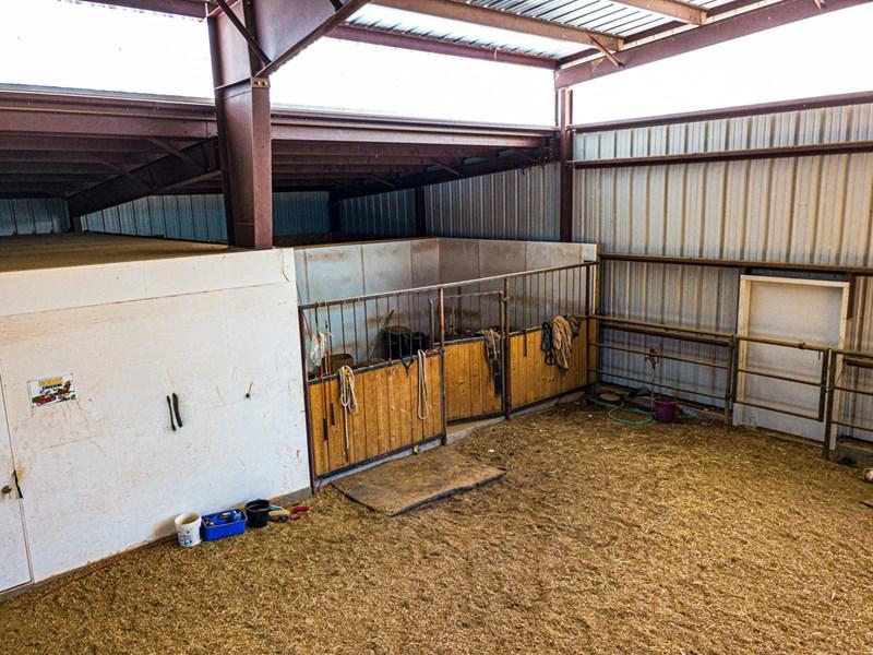 Indoor foaling stall