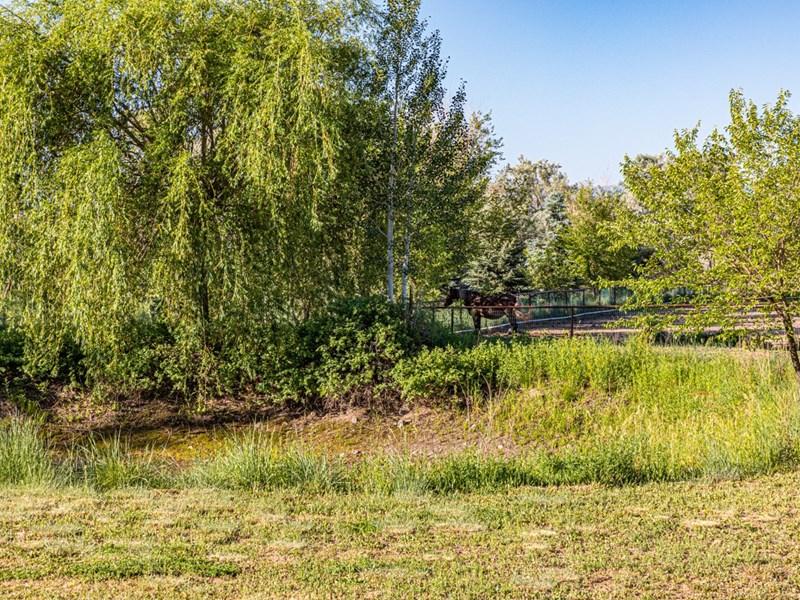 Irrigation storage pond