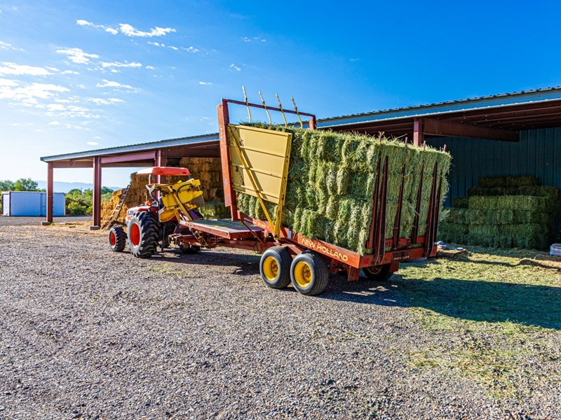 Hay from 1st cutting