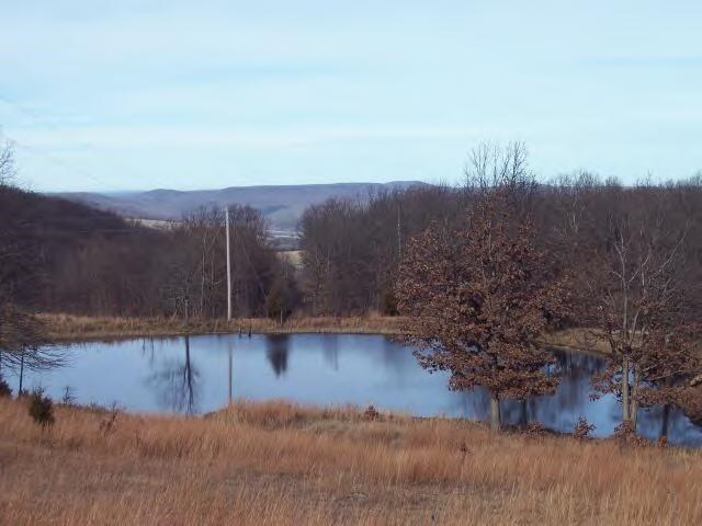 Mountaintop Acreage  near Buffalo River National Park