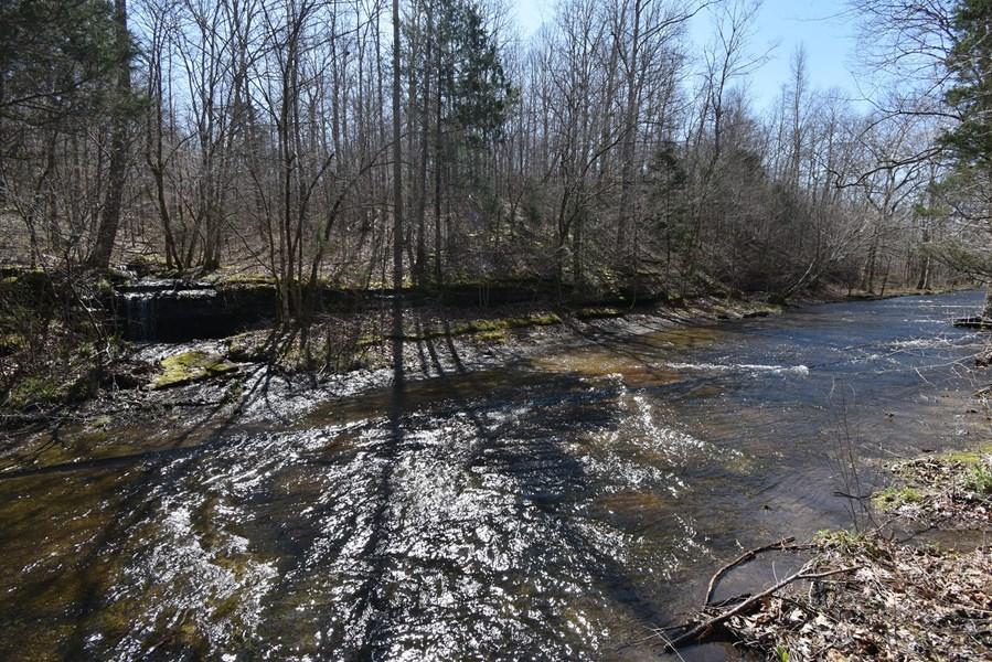 Tn Hunting land with creek