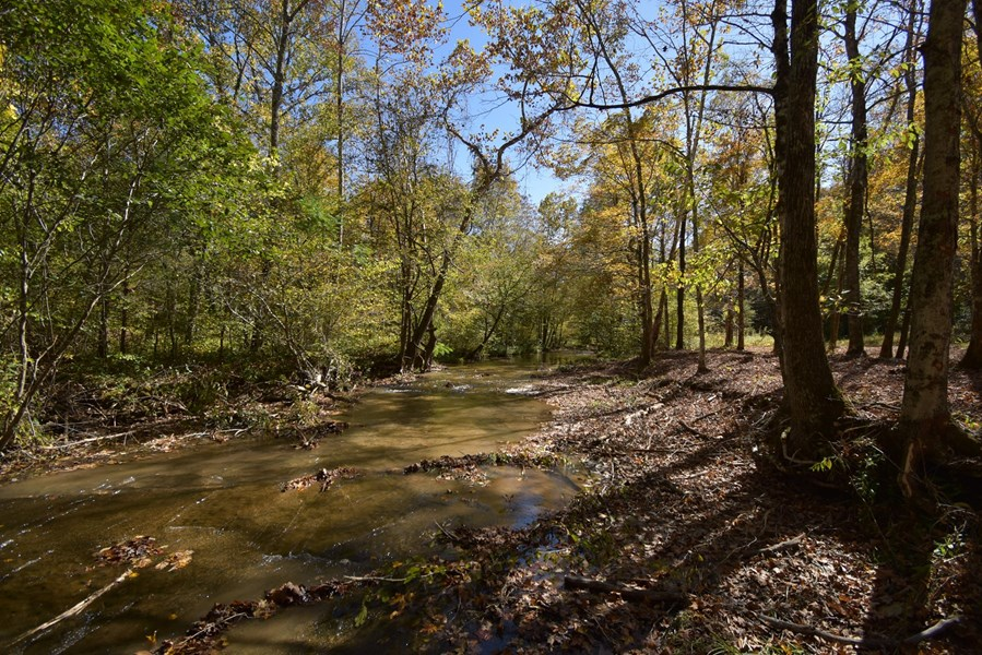 Tn property with creek
