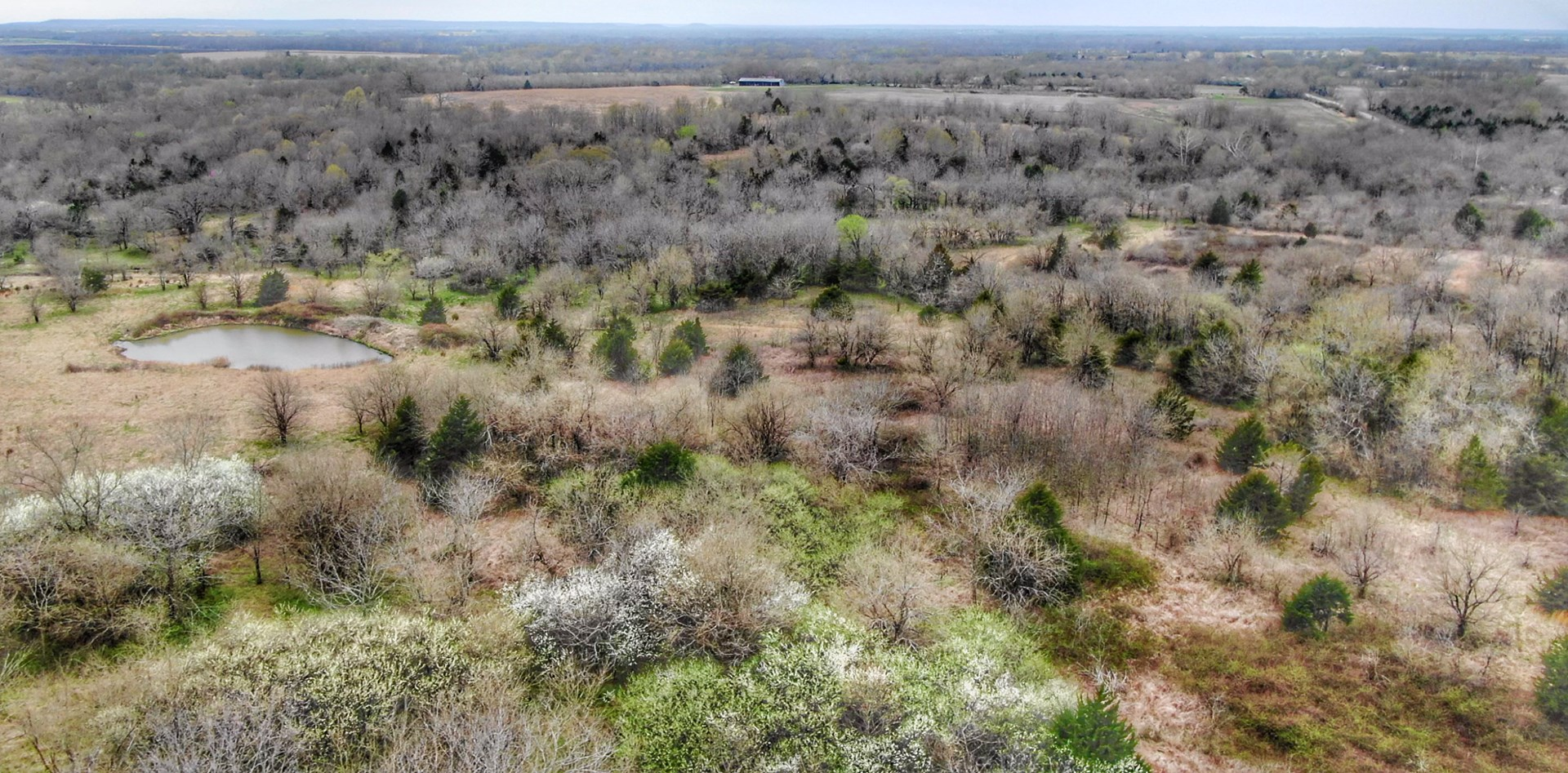 Kansas Investment Farm Land with Trophy Whitetail Hunting