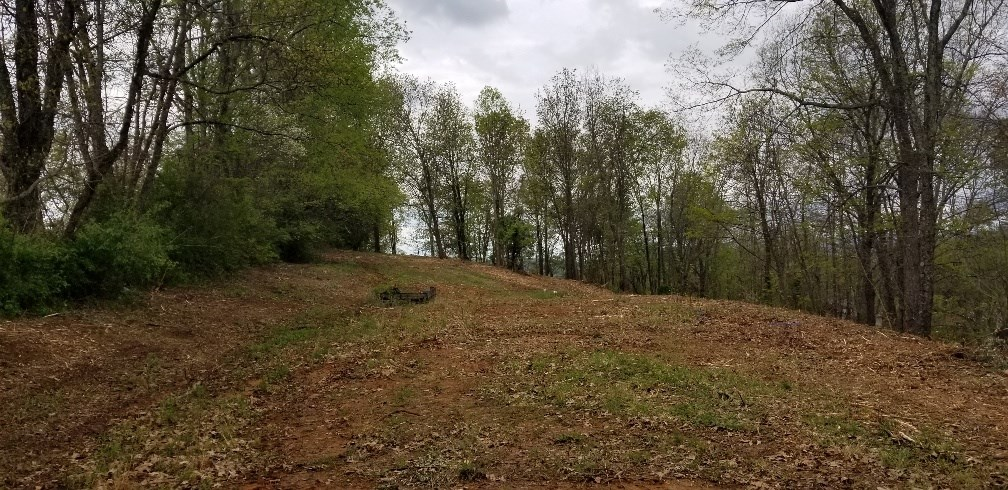 3.37 +- Acres with Beautiful Views!  Saltville, VA