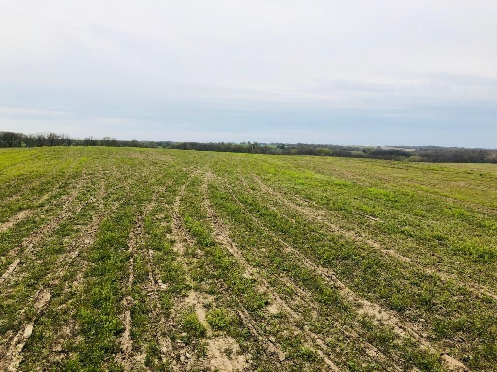 Tillable Row Crop Farm Land with Hunting Saline Co MO