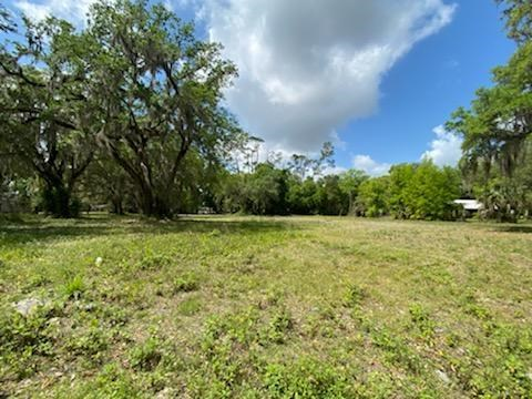 Cross City, Florida vacant land for sale!