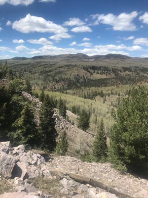 NORTHERN NM HUNTING & RECREATIONAL RANCH FOR SALE CHAMA NM