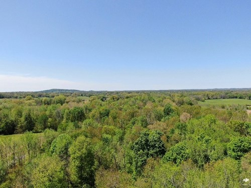 Farm for sale near Glasgow Ky, 139 acres in two locations.