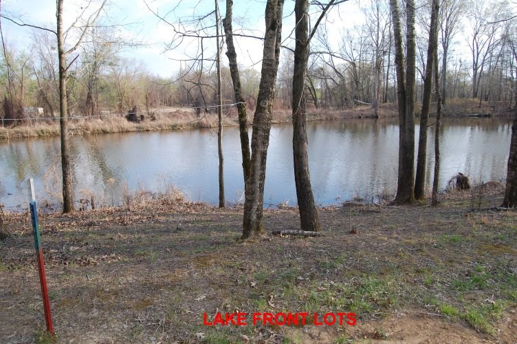 ABOUT 50 X 200 FOOT TN LAKEFRONT LOT FOR SALE NEAR TN RIVER