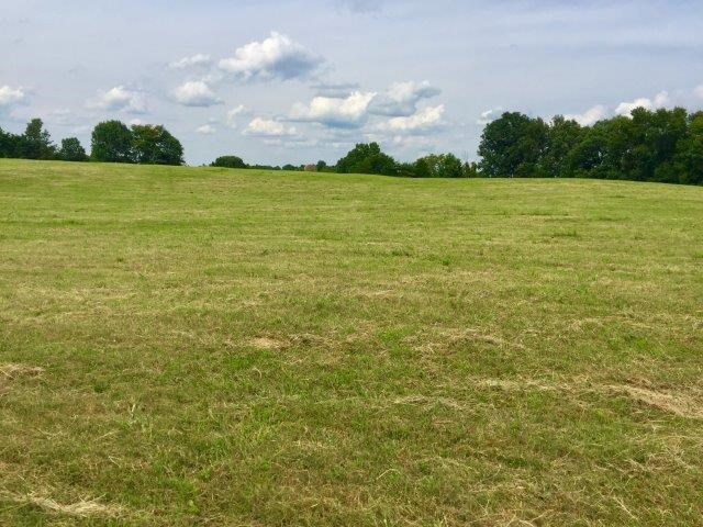 Land for sale Thompkinsville Hwy Moss TN