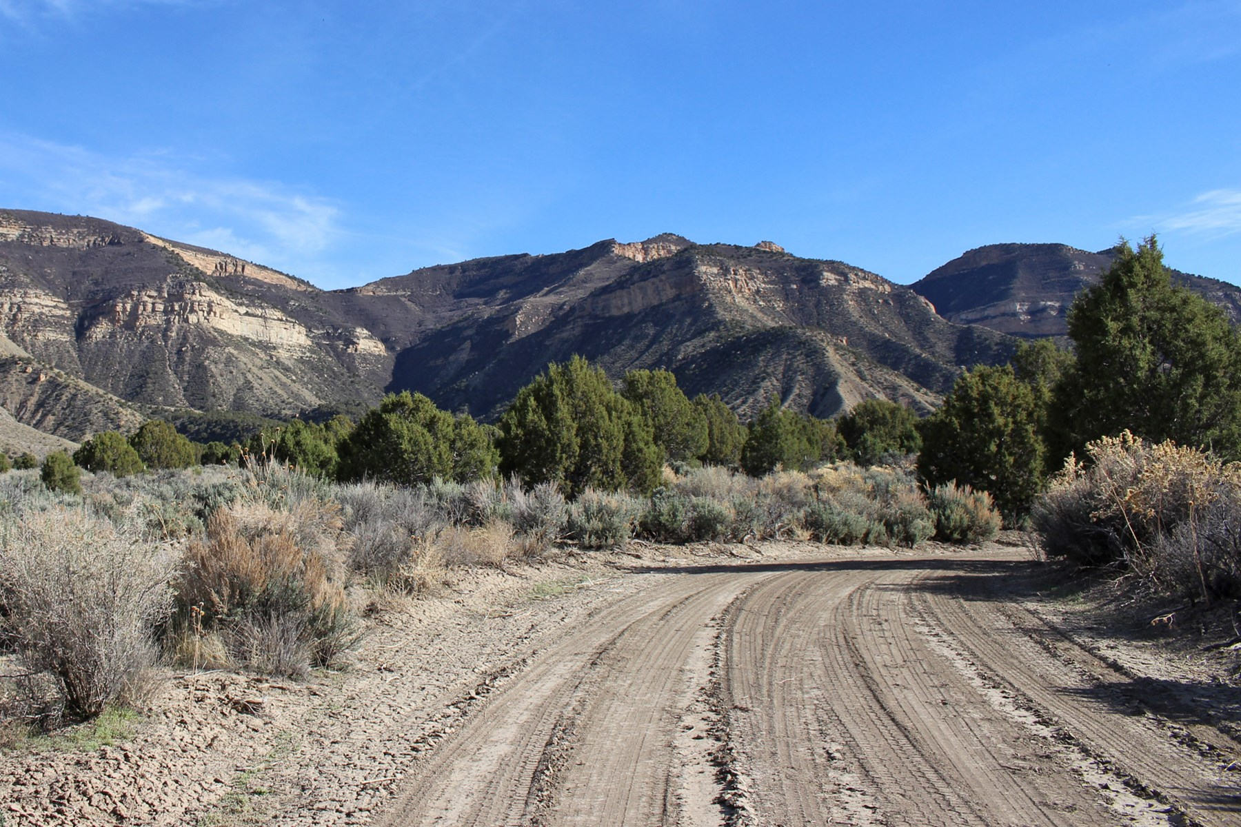 40 acre lot bordering BLM in Southwest, Colorado