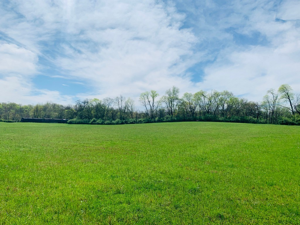 Mount Pleasant, Tennessee Land for Sale in Town w/ Acreage