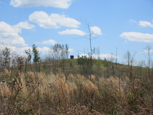 Ohio Prime Hunting Land and Investment Opportunity