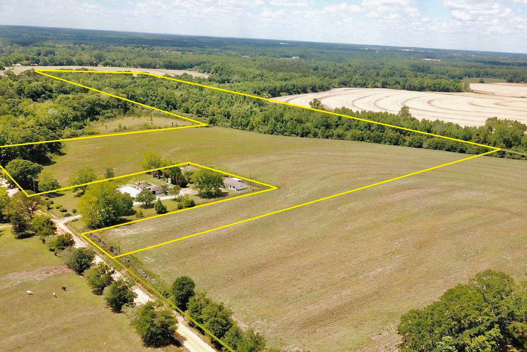 43 Acres  Land for sale Malvern, Alabama - Geneva County AL