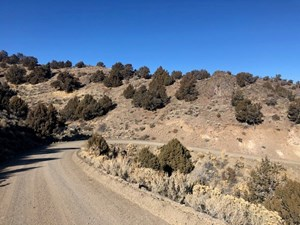801 ACRES OF RANGE LAND W/ LIVE WATER IN GERLACH, NV!
