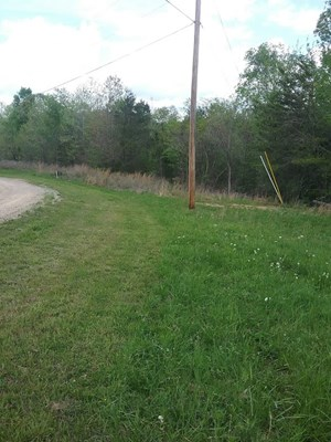 5.33 MOSTLY WOODED TN ACRES FOR SALE PART OF IT ON TN RIVER