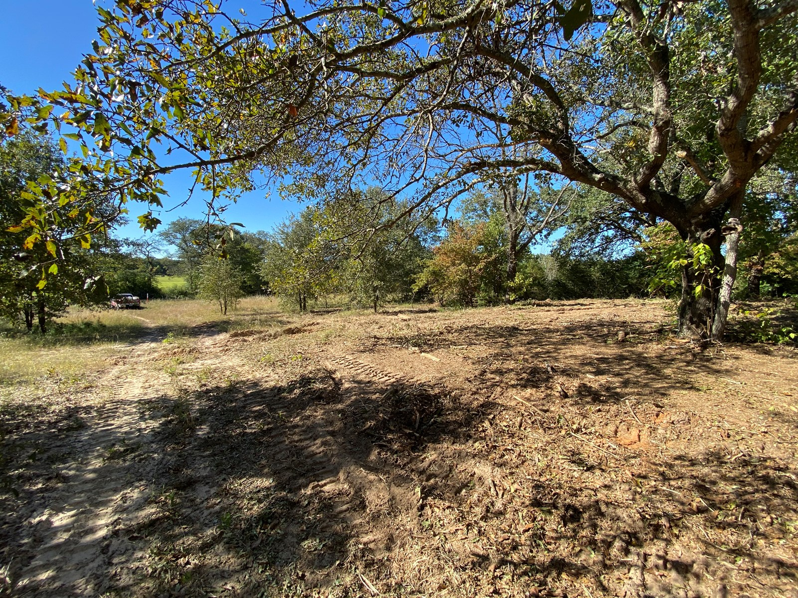 Marion County Jefferson Texas Land For Sale