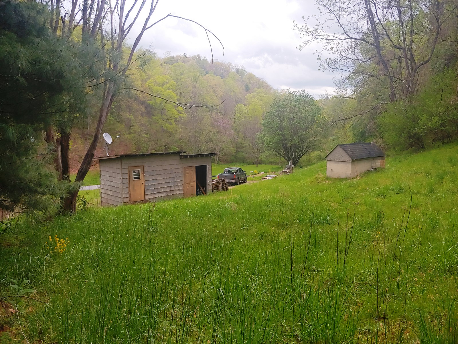 Secluded Home Site for Sale in Shawsville VA