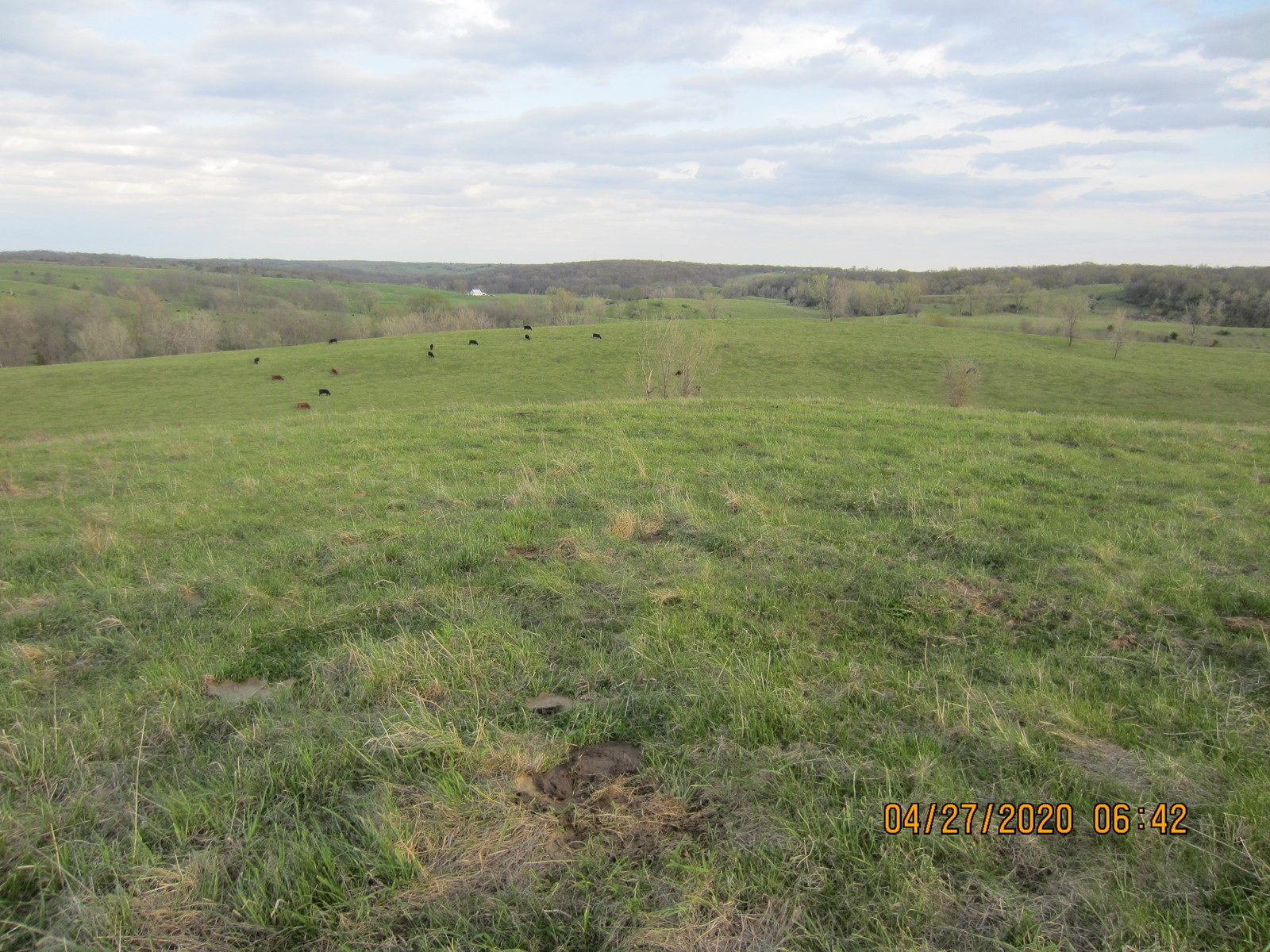 120 Acres M/L Land For Sale in Unionville, MO