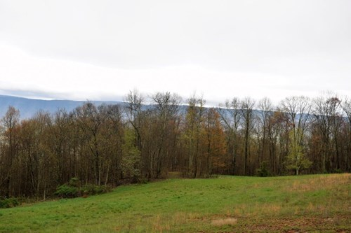 Incredible Hunting Property for Sale in Narrows VA!