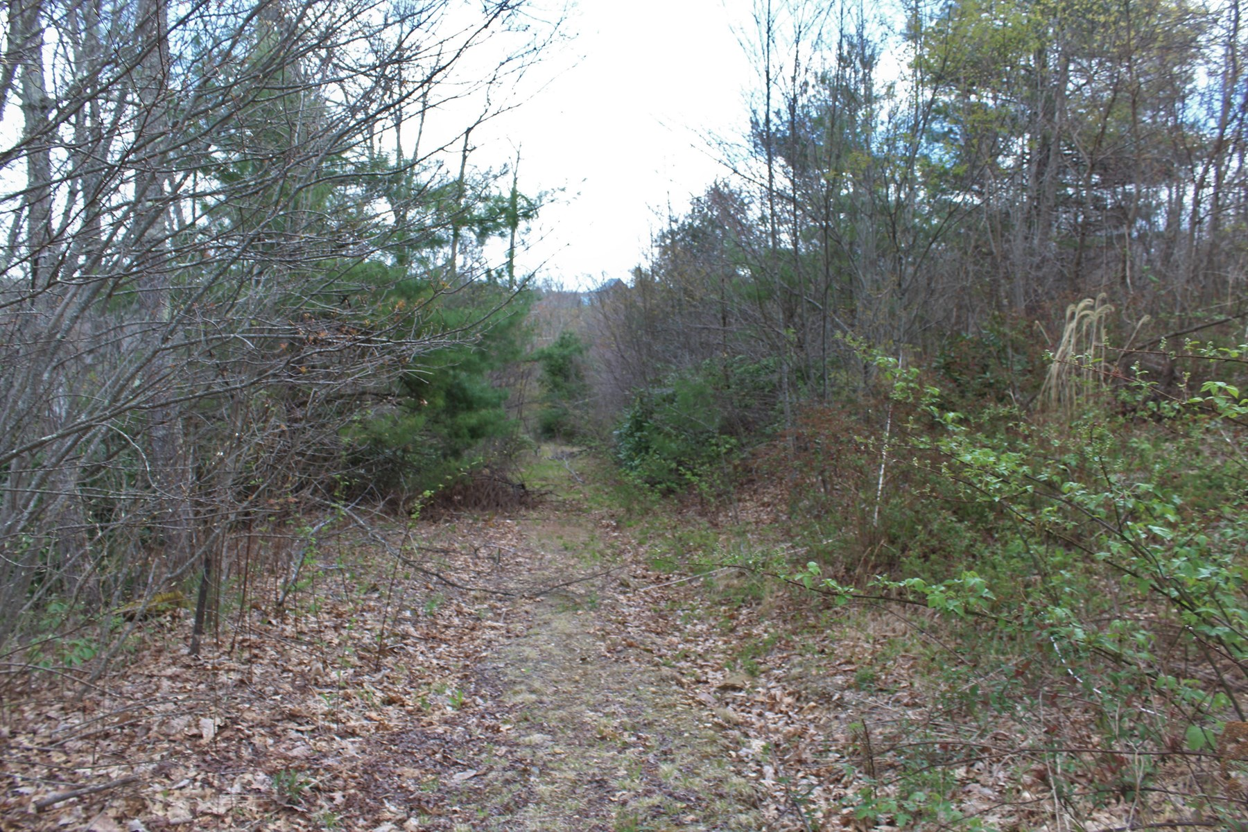 8.01 ACRES FOR SALE IN PATRICK COUNTY, VIRGINIA