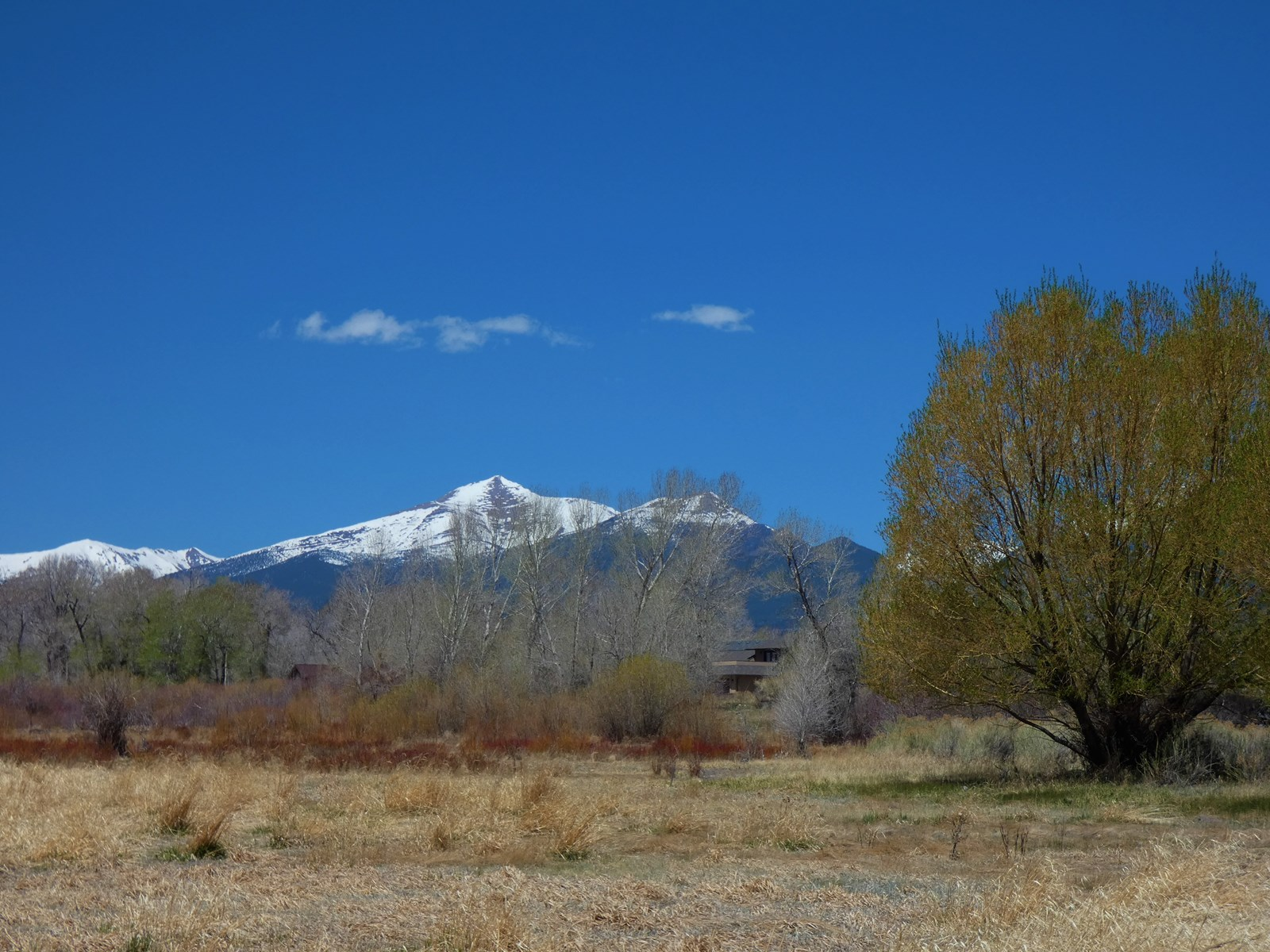 1.37 Acre Lot Near Salida, CO-1102 Little River Lane