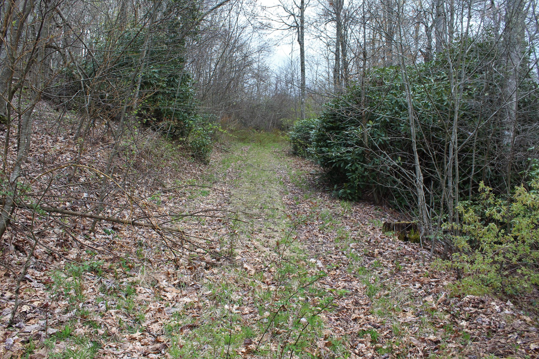 5.47 ACRES  FOR SALE IN PATRICK COUNTY, VIRGINIA
