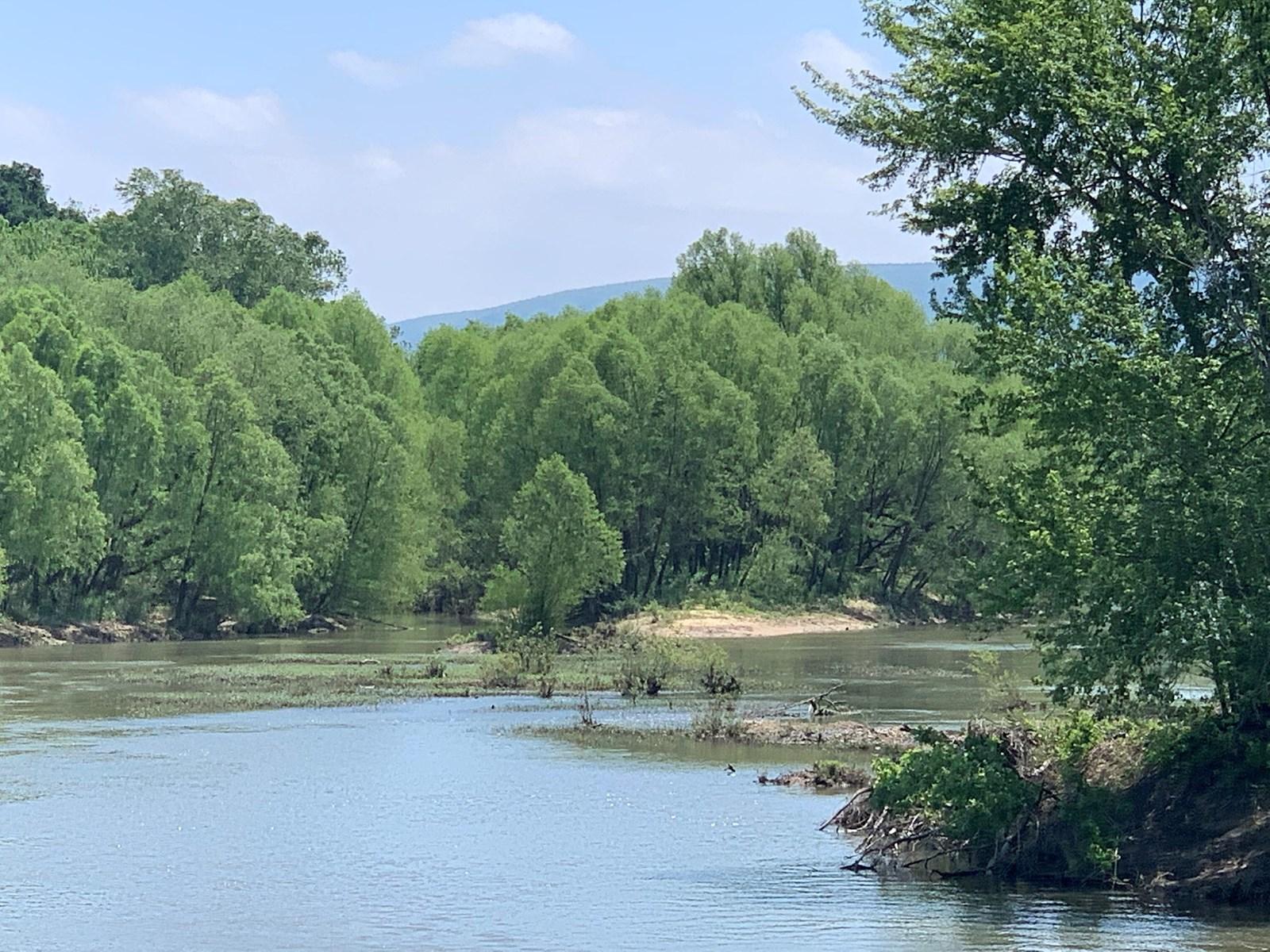 Kiamichi River Front Hunting paradise!