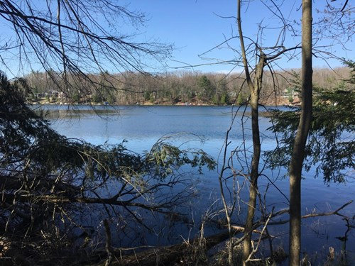 NW Michigan Waterfront Lot on 70 acre Blue Lake