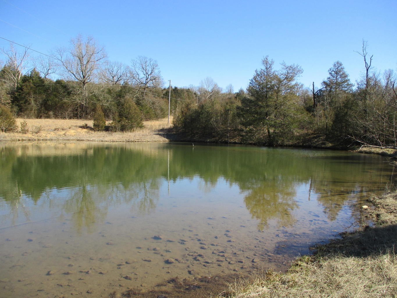Excellent 80 Acre Farm Near Bryant River Gainesville, MO
